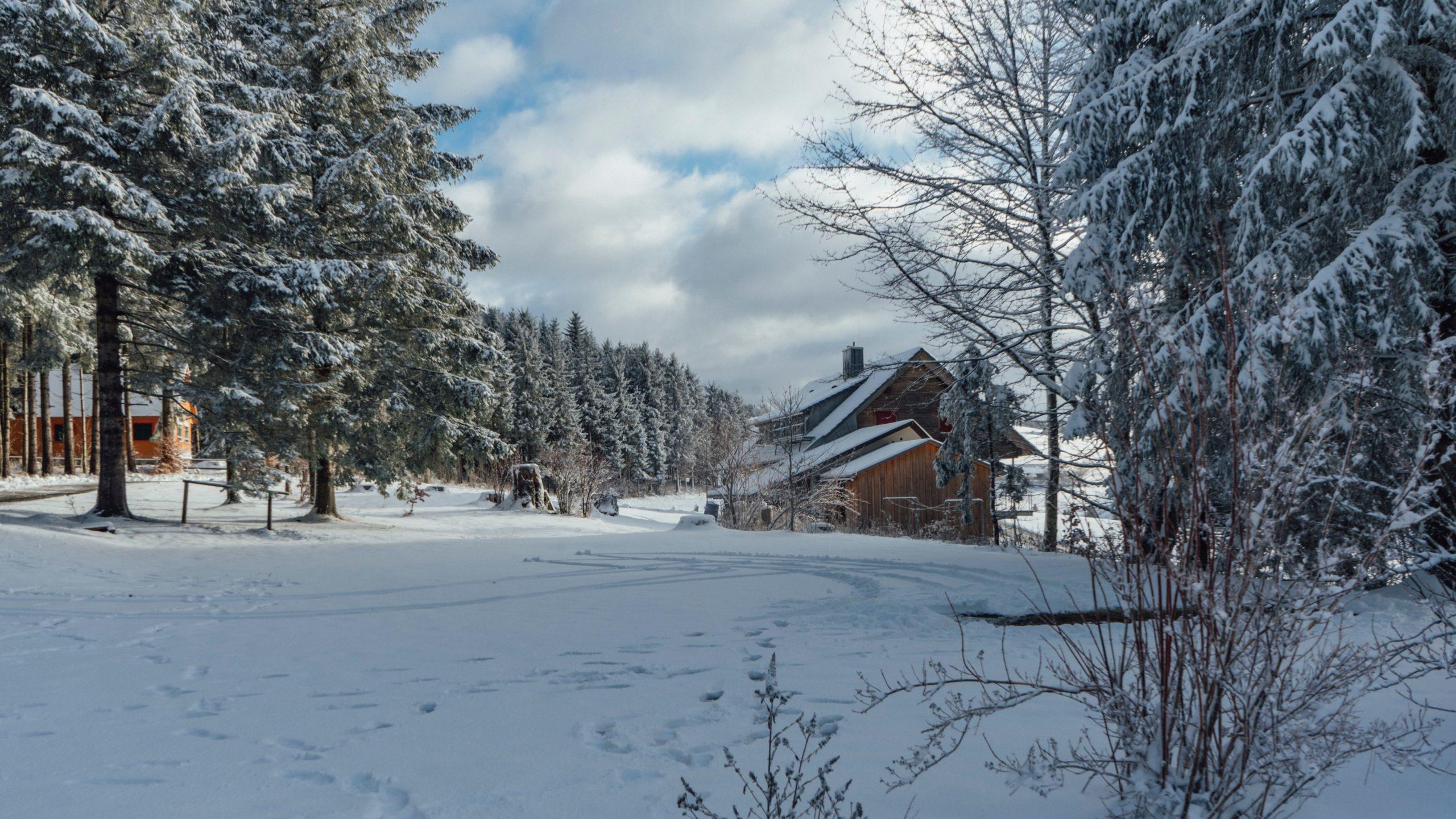 Bilder Galerie Hütte Winter