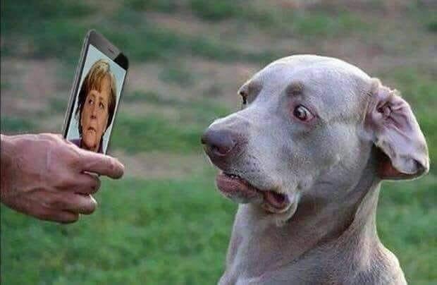 Merkel - die unbeliebteste Politikerin Deutschlands
